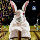moon-rabbit