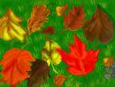 amis-autumn
