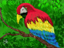 exotic-bird